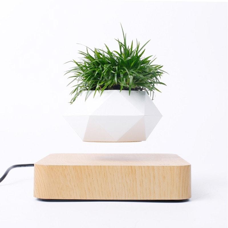 Pot de fleur en lévitation décoration d'intérieur bureau bois clair présentation latéral