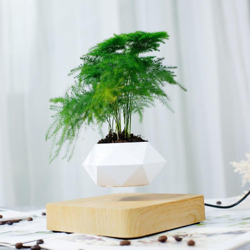 Pot de fleur en lévitation bois clair décoration d'intérieur bureau présentation avec bansaï
