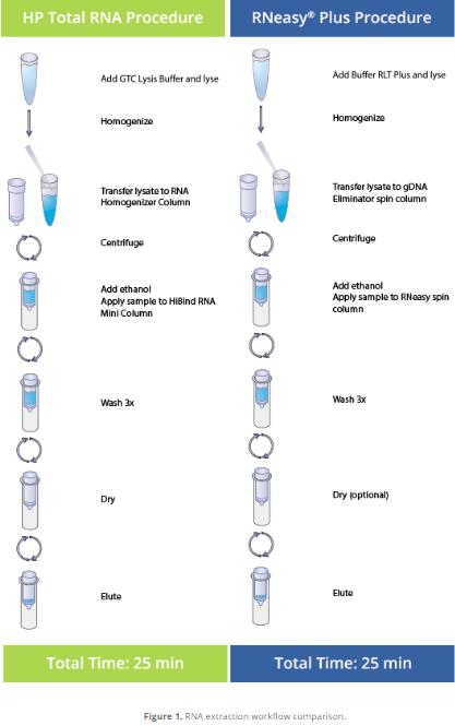 A Performance Comparison Study: Omega Bio-tek's E.Z.N.A.® HP Total RNA Kit vs. Qiagen's RNeasy Plus Mini Kit | Omega Bio-tek