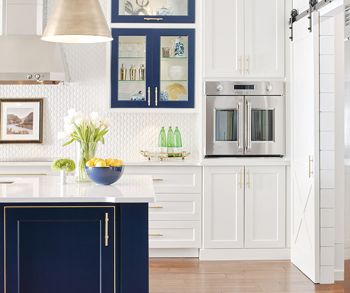 kitchen cabinets color combination home depot exhaust fan renner shaker style cabinet doors - omega cabinetry