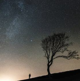 gazing at night sky