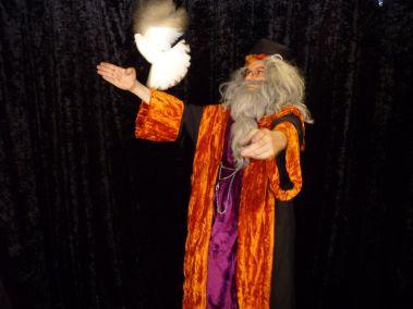 N°8 Fifi + Dumbledore_800_600