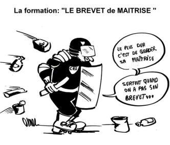 N° 14 LA FORMATION LE BREVET de MAITRISE_561_480