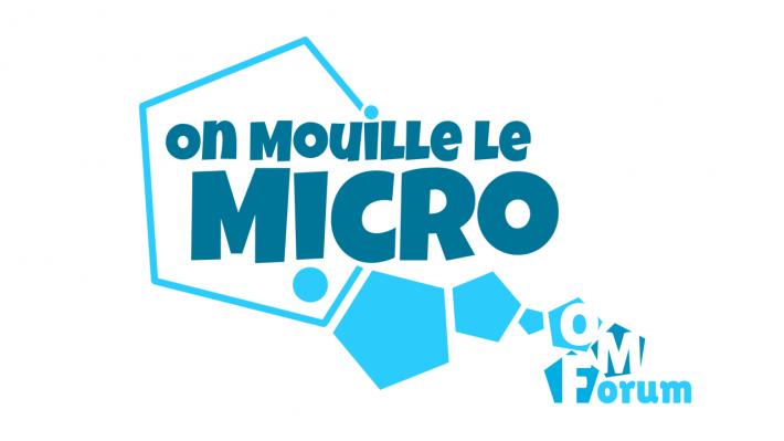 logo omlm