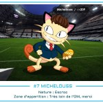 07 - Michelouss