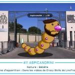 11 - Aspicandrini