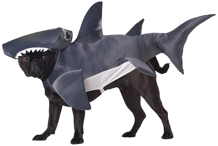 Animal Planet Hammerhead Shark Dog Costume