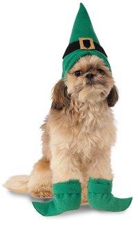 creative-dog-costumes-leprechaun - OMG I Need