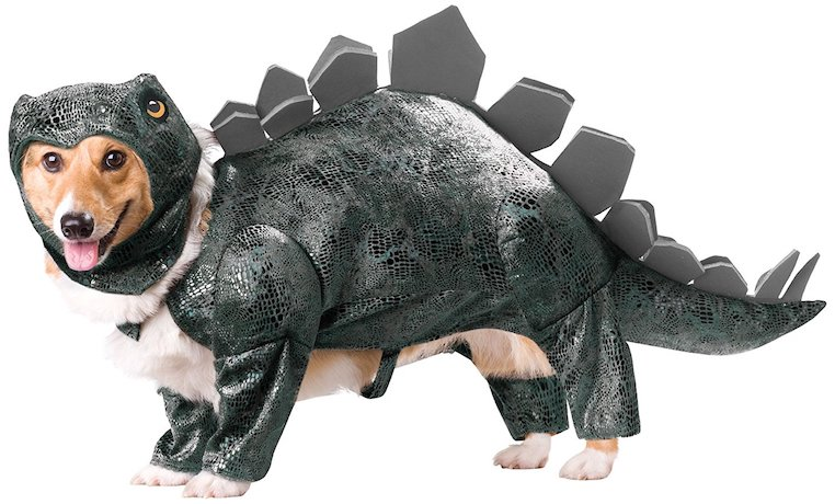Animal Planet Stegosaurus Dog Costume