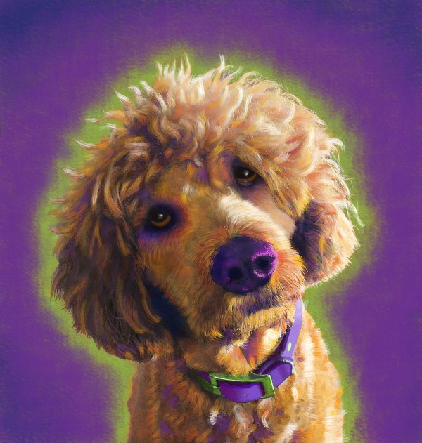 Poodle custom Portrait