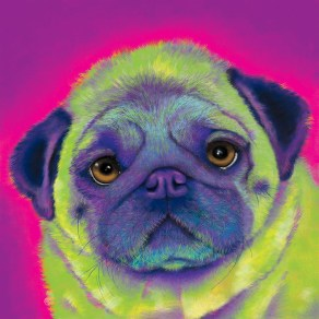 Pug Custom Painting