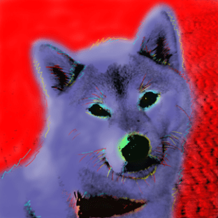 Shiba Inu Pop Art Painting