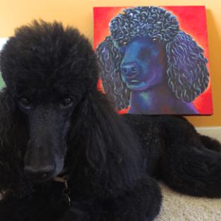 Poodle Acrylic Painting