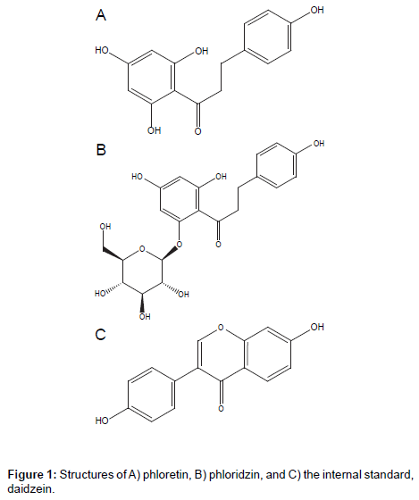 chromatography-separation-techniques-internal-standard