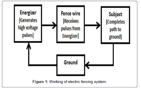 electrical-electronic-systems-electric