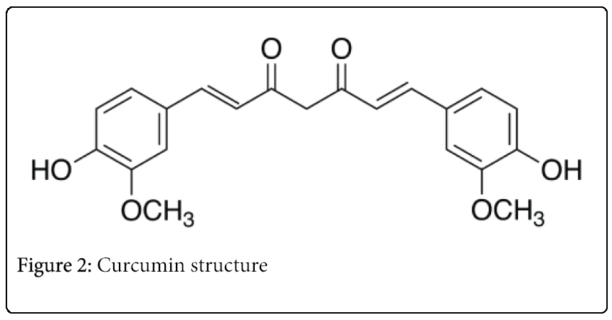 Multiple Biological Actions of Curcumin in the Management