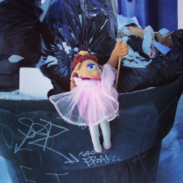 Garbage Fairy