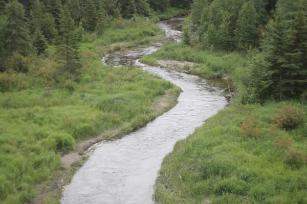 Ness Creek