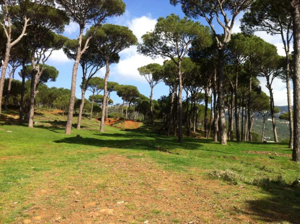 Arsoun: Yoga & Hiking