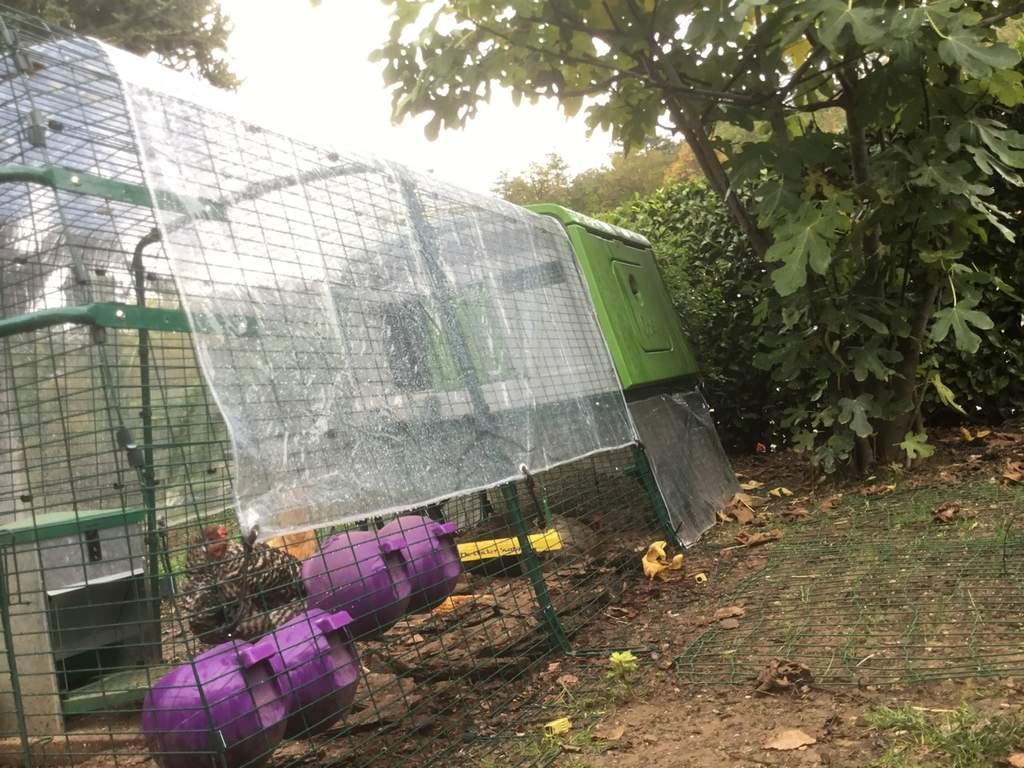Klarsichtcover Fur Eglu Cube Mk2 2 Meter Eglu Wetterschutz Huhnerstalle Huhnerzubehor Omlet