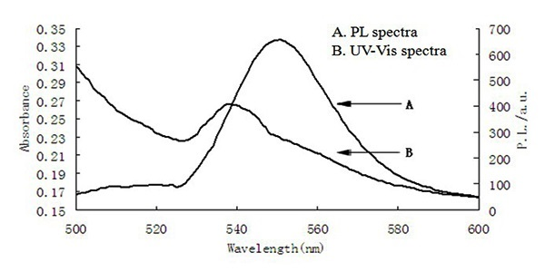 Preparation of Quantum Dots and Fluorescent Molecularly
