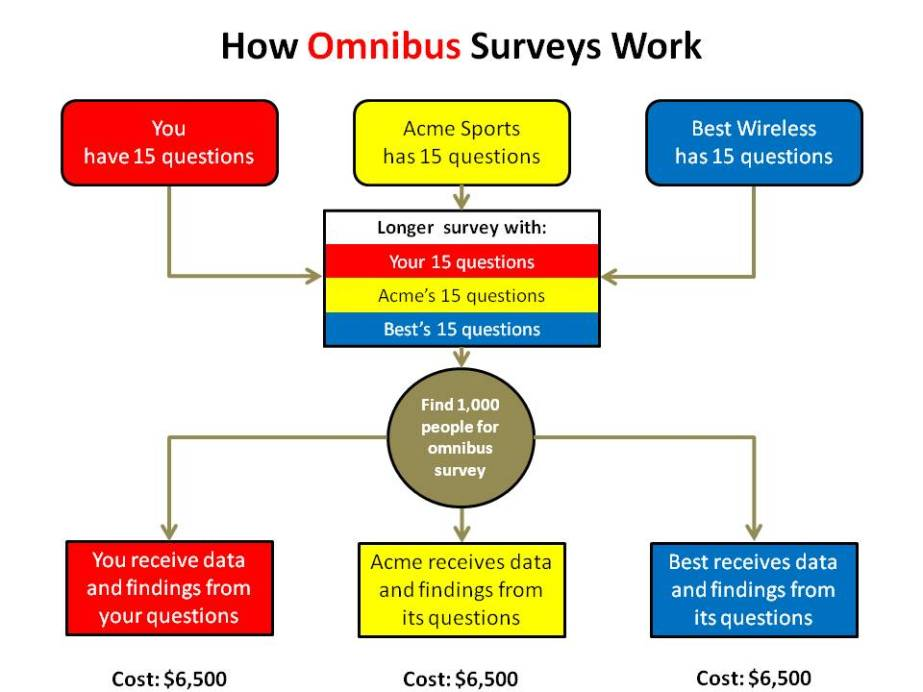 Omnibus Survey diagram showing process