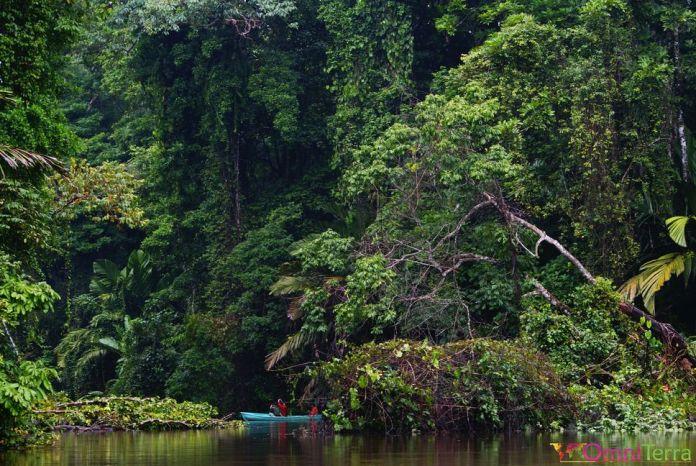 Parc national de Tortuguero