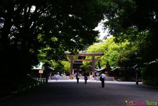 Japon - Tokyo - Sanctuaire Meiji-Jingu