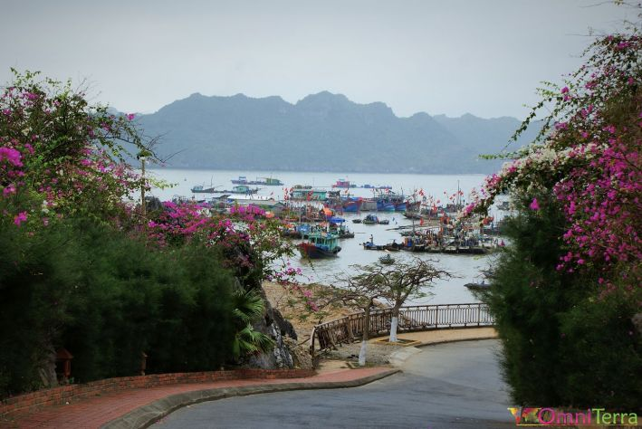 Vietnam - Cat Ba - Port