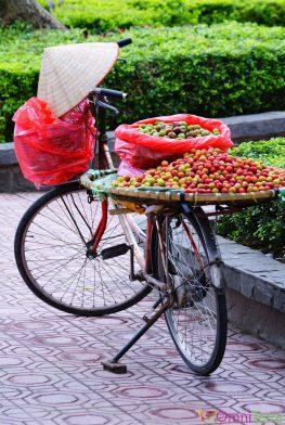Vietnam - Hanoi - Vendeuse