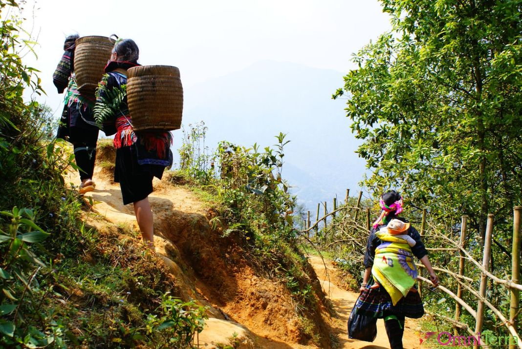 Hmongs Sapa
