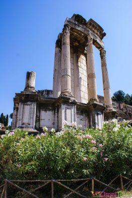 Rome - Forum romain 2