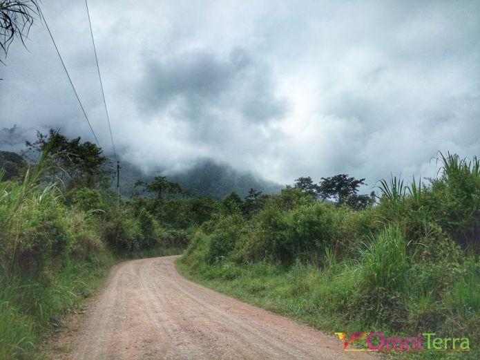 equateur-mindo-route