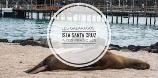 galapagos-santa-cruz-otaries-2