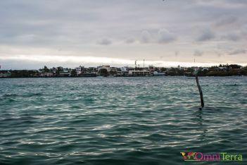 galapagos-santa-cruz-puerto-ayora