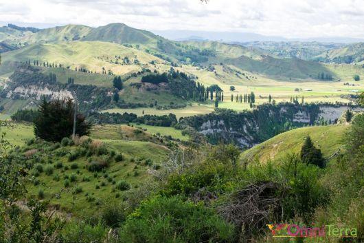 Nouvelle Zelande- Collines