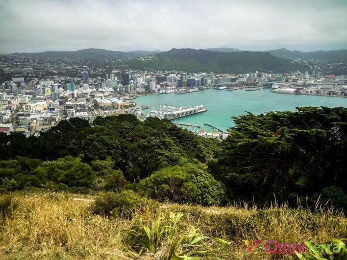 Nouvelle zelande-Wellington-panoram