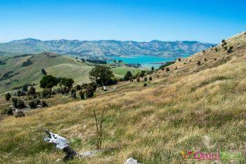 Nouvelle Zélande - Summit road