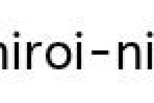 преподаватель японского языка
