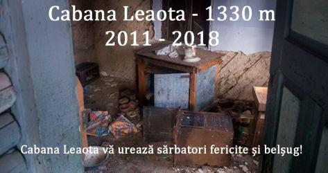 Salvați Cabana Leaota