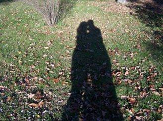 fall-shadow