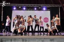 Parco Castelli 2015 (18)