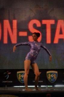 sportshow 2013 (1)
