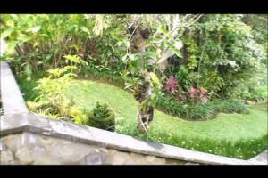 Ubud Hanging Gardens virtual tour feature image
