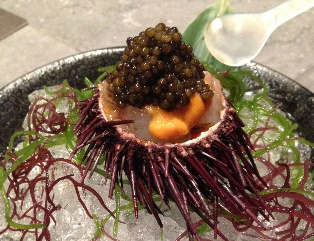 Waku Ghin sea urchin