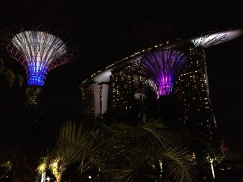 Super Trees Gardens by the Bay