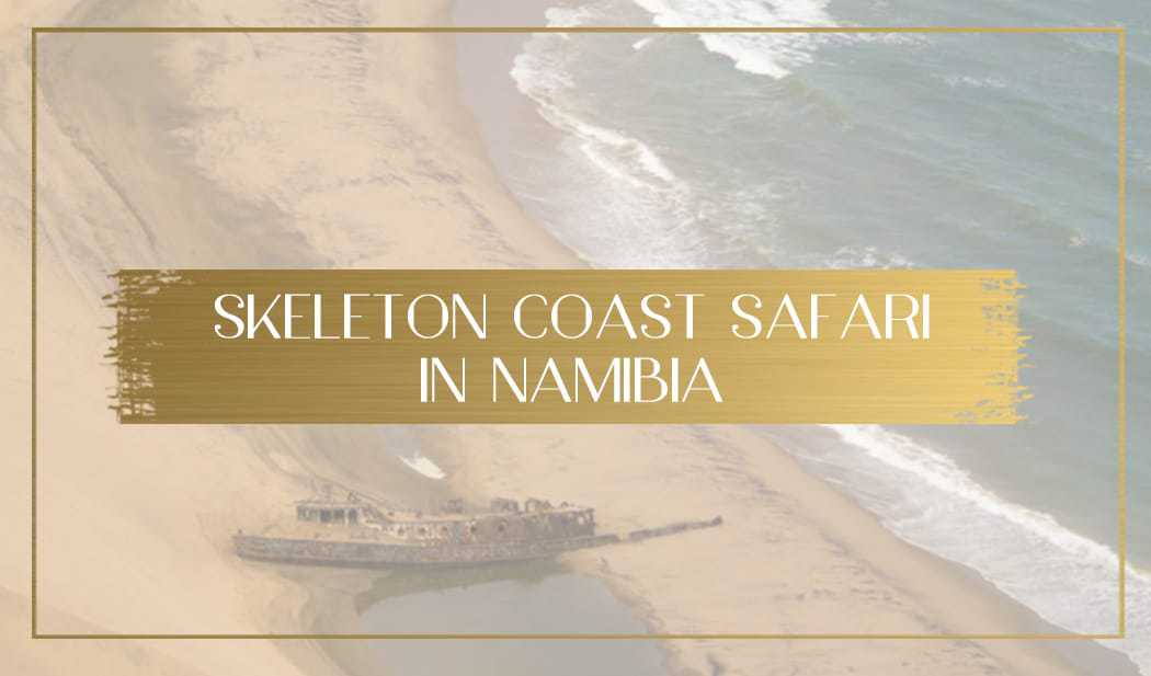 Skeleton Coast Safari main