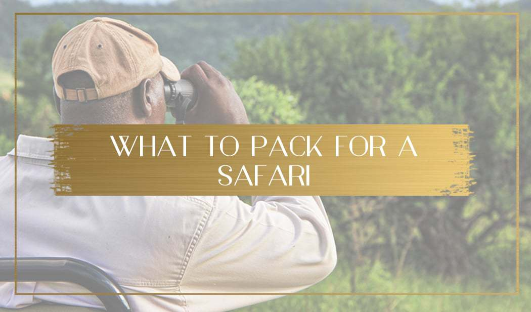 What to pack for a safari main
