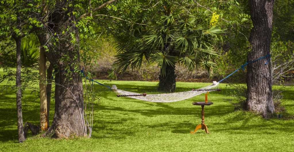 Ulagalla Resort Review - the garden