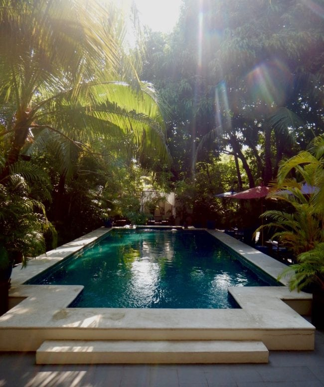 """Lush pool The Pavilion Hotel Phnom Penh"""